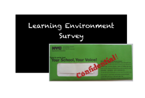 Learning Environment Survey